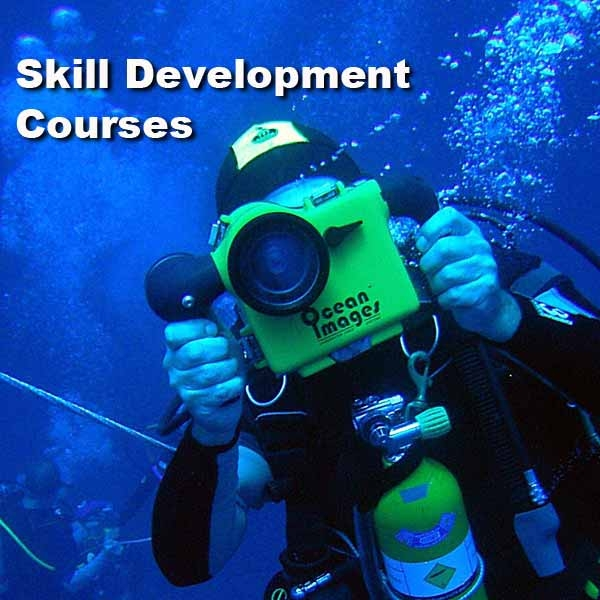 Skill Development Courses